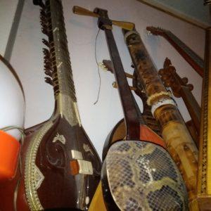 cordofoni giapponesi-orientali (Grande)